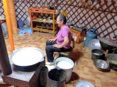 Brewing airag or kumis