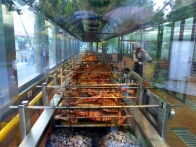 Roasting lamb from Ninety-Nine Yurts, an Inner Mongolian traditional restaurant in Beijing