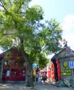 Hutong in the old city